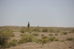 désert, cibola, désert, refuge