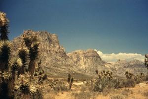 desert, panorama, landscape