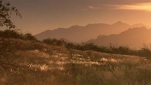 désert, scène, colline