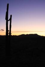 dusk, desert