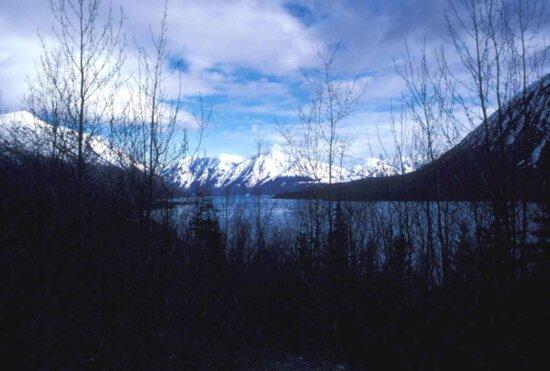 kenai, lake, spring, dusk