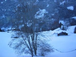 hiver, l'aube