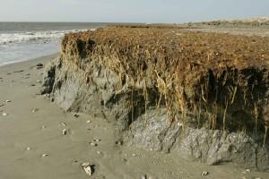 spiaggia, l'erosione, effetti, costa