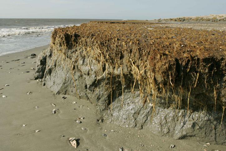 plaža, erozije, efekti, obala
