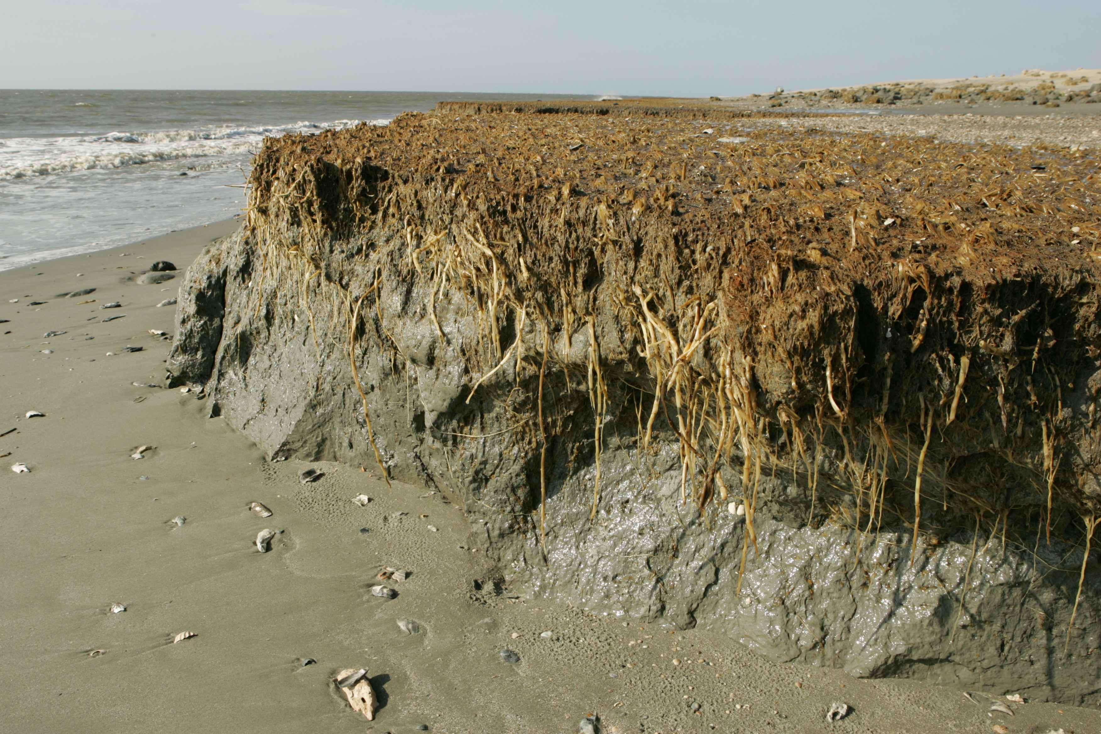 Kostenlose Bild: Strand, Erosion, Effekte, Küste