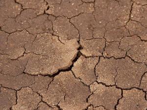 çatlaklar, kurutulmuş, çamur, plaj