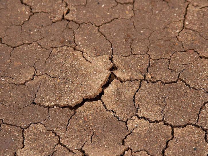 fissures, séchés, boue, plage