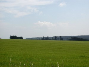 agricultural, fields
