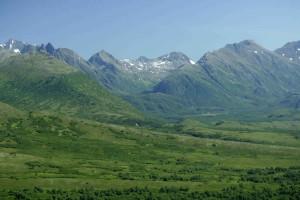amazing, green, fields, scenics