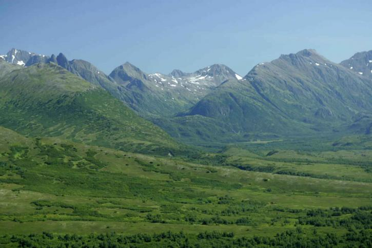incroyable, vert, champs, scenics
