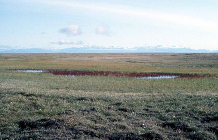Arctique, désert, refuge, ruisseaux, gamme