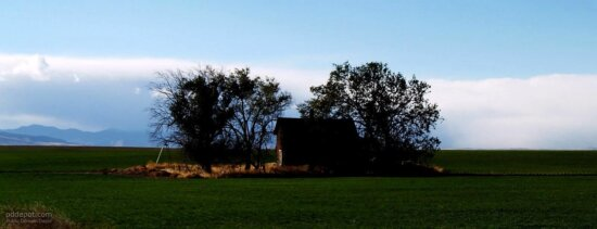 farmhouse, field