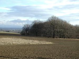 field, plowing
