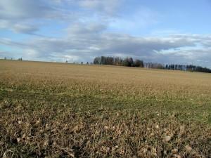 terrain, campagne