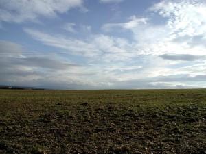 field, landscape, stock, image