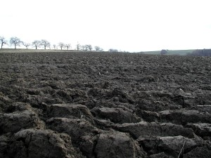 plowing, agricultural field