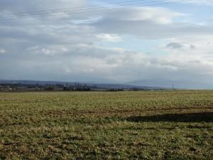 field, sky