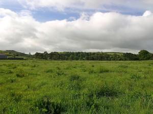 fields, clouds, Ireland