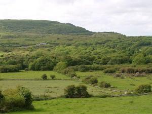 fields, hills, forests, Ireland
