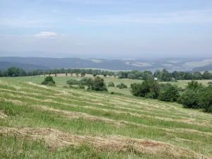 fields, hills