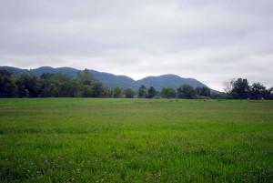 Holyoke, escala montanhas, campo, vermelho, trevo