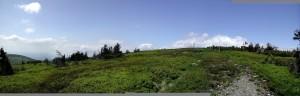 panorama, field