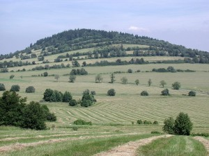 pasture, mountains