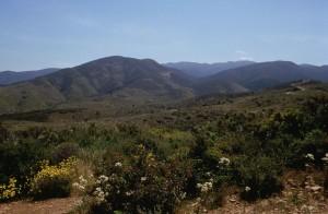 Diego, scenics, champs, collines