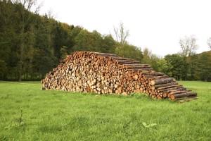 wooden, logs, field