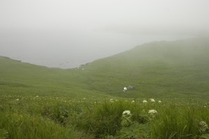 chowiet, island, camp, fog