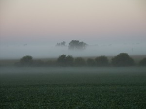 рано утром, туман