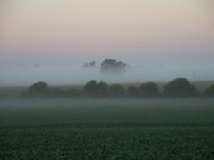 presto, mattina, nebbia