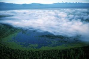 мъгла, ландшафт, панорамен