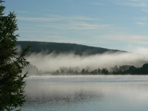 mist, lake, morning