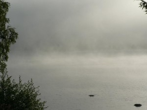 morning, mist, lake