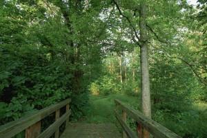 portion, one, foot, trails, pedestrian, bridge