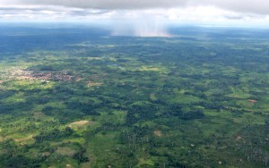 aerial, forest, settlements, rain, falling, distance