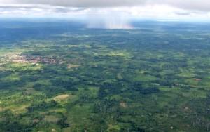 aérea, floresta, assentamentos, chuva, caindo, distância