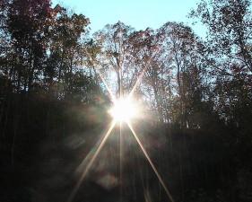 le lever du soleil, forêt