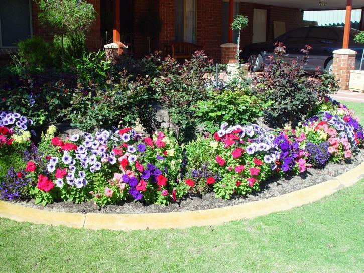 flower, garden, home, grass