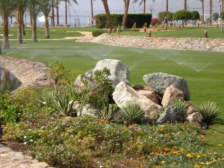 Image libre jardin arrosage - Arrosage jardin ...
