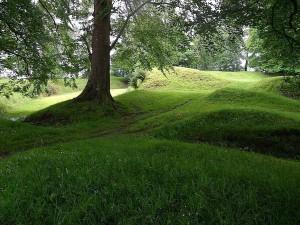 màu xanh lá cây cỏ, công viên