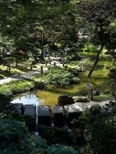 Nhật bản, trà, vườn, vàng, cổng, công viên