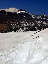 logan, pass, glacier, national park, spring