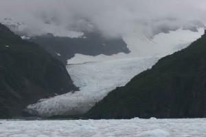 Tiger, Gletscher, sitzt, Chenega, Gletscher, Prinz William, Sound, Alaska