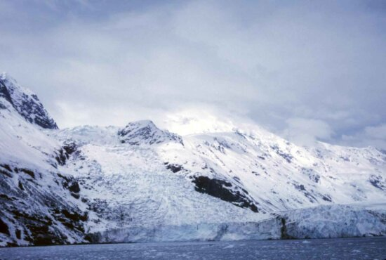 tidewater, glacier, prince, William, sound