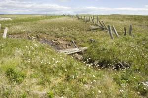broken, wooden, fence, grass