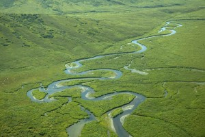 aériennes, photographie, rivière, vert, collines