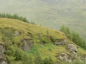 beautiful, Scottish, countryside