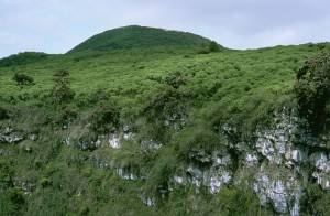 bright green, hills, galapagos, islands